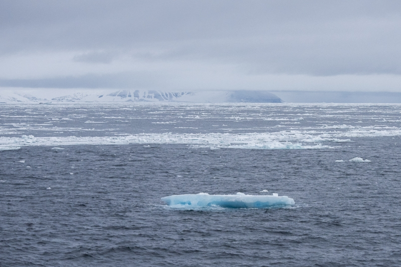 The ice edge